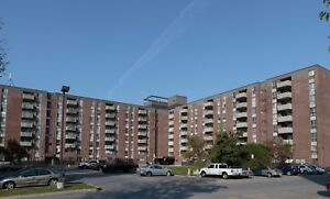 Lrg 2 Bed Apt for March 1st - $1275.00