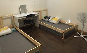 North bridge double roome for a male Northbridge Perth City Area Preview