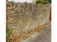 Stone wall with coping