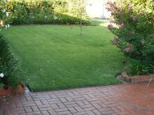 Matthew's Mowing and Maintenance Services Largs Maitland Area Preview