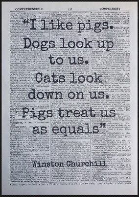 - Pigs Winston Churchill Quote Vintage Dictionary Page Print Picture Art Dog Cat