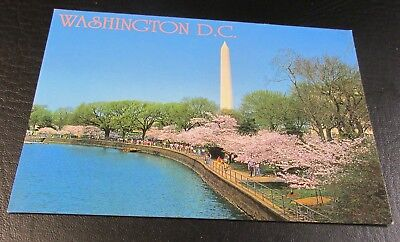 Postcard<WASHINGTON,DC>{ WASHINGTON MONUMENT IN THE SPRING}