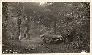 Hythe-Nelsons-Lodge-Lane-by-E-Mudge-Horse-Cart
