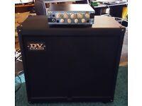 DV Mark Micro 50 Guitar Amp Head + DV Mark 150 Watt 112 Neoclassical Guitar Speaker Cabinet