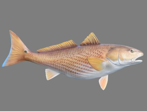 """29-inch Redfish Fiberglass Replica - """"Half-Sided"""" for Budget-Minded!  Brand New"""