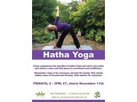 Hatha Yoga Class - Every Friday 2-3pm - Only £7