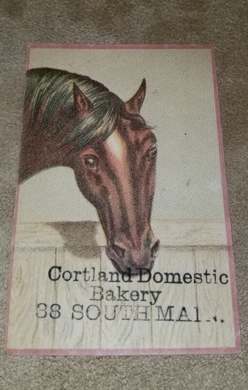 1880s Trade Card Cortland Domestic Bakery 38 South Main St. HORSE