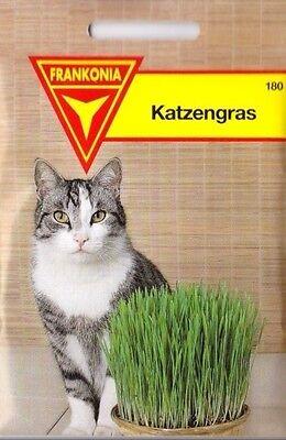 Katzengras Saatgut Katzengrassamen 5 Packungen Katze Tiere