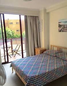 Double Room to Rent Bondi Junction Bondi Junction Eastern Suburbs Preview