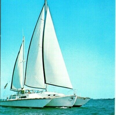 Charter Yacht Perspective Trimaran sail boat ship Sarasota FL Vintage Postcard