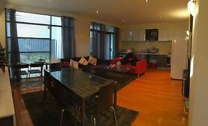 Fully Furnished Share Room in NORTHBRIDGE CENTRAL! Northbridge Perth City Area Preview