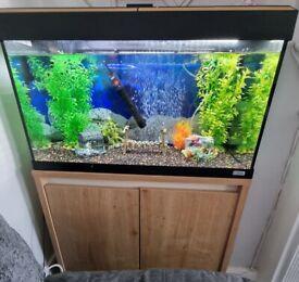 Fluval Roma 125L Fish Tank