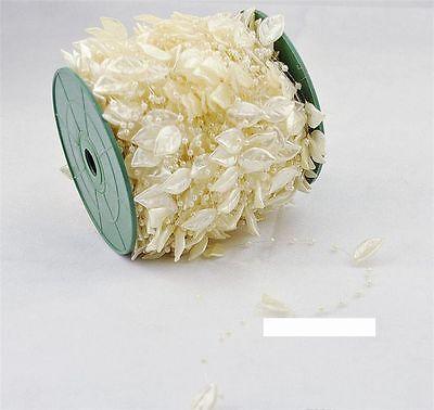 Girlande mit Perlen und Blättern zur deko oder zum basteln ()