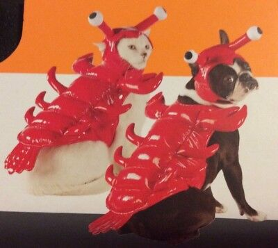 Pet Lobster Costume Halloween Dog Cat Outfit Cute Red Size XS Extra Small  - Lobster Halloween