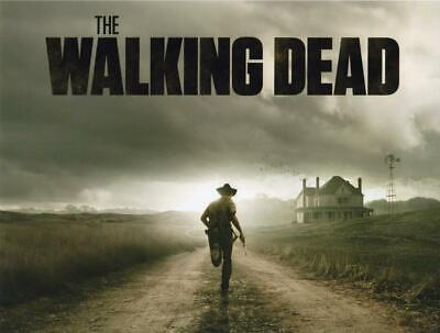 Walking Dead 8x10 Picture Simply Stunning Photo Gorgeous Celebrity #1 for sale  Shipping to Canada