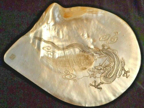 """ASIAN Mother of Pearl SHELL w/ DRAGON / SERPENT ENGRAVING 9 1/4"""" x 8"""" LARGE EXC!"""