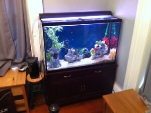 110 gallon fish aquarium