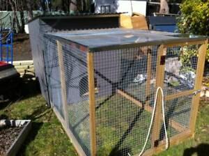 Chicken runs Margate Kingborough Area Preview