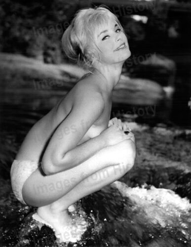 8x10 Print Elke Sommer Sexy Revealing Pin Up #1652