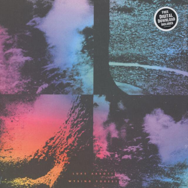 Luke Abbott - Wysing Forest (Vinyl 2LP - 2014 - EU - Original)