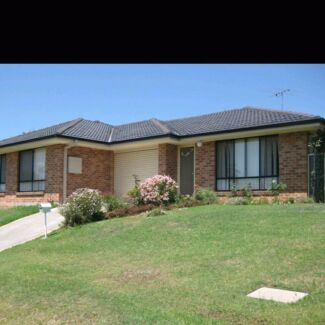 Room for rent  Aberglasslyn Maitland Area Preview