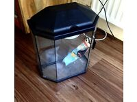 Fish tank - unused - with light & brand bew boxed filter