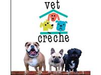 Vetcreche ltd