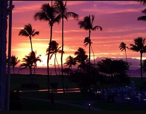 Looking for a condo rental in Maui