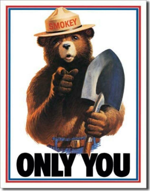 Smokey Bear Only You Can Prevent Forest Fires Tin Metal Sign Made In The USA