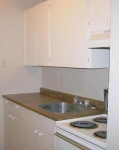 1 Bedroom -  - Parkview Place - Apartment for Rent Yorkton Regina Regina Area image 12