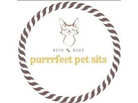 REGISTERED Cat Sitter and PetSitter, Veterinary Nurse, FULL DBS CHECK. References Available