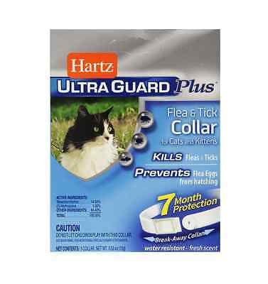 Hartz Ultraguard Plus Flea -Tick Collar for Cat, Fresh Scent 1 ea