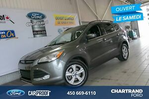 Ford Escape 4 portes SE, Traction intégrale - Gris Sterling