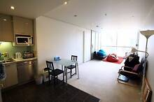 Share Apartment/One Bedroom Available 17 July/Asian Prefer Melbourne CBD Melbourne City Preview