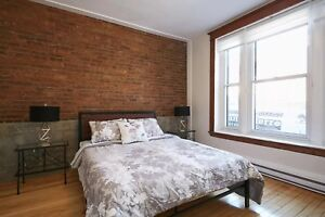 Beautifully  Furnished-All included 2 bedroom. Plateau /Mile end
