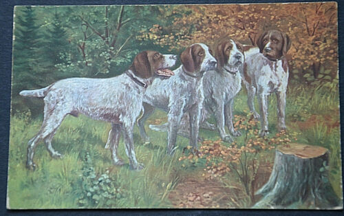 49531 Ak Hunting Dogs IN The Forest