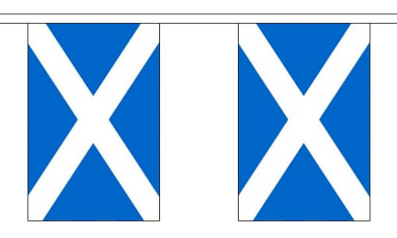 SCOTLAND ST ANDREW LIGHT BLUE 3 METRE BUNTING 10 FLAGS flag 3M SCOTTISH