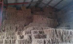 FEED HAY FOR LIVE STOCK Finniss Area Preview