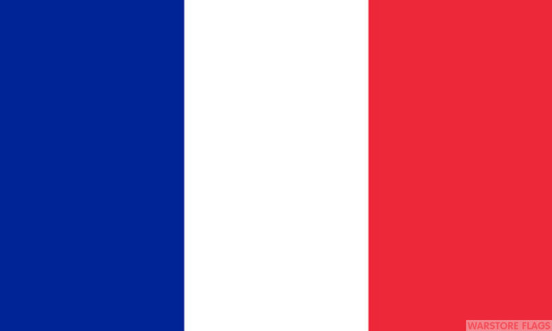 """FRANCE BUDGET FLAG small 9""""x6"""" GREAT FOR CRAFTS FRANCAIS French"""