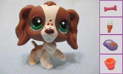 Littlest Pet Shop Dog Cocker Spaniel 156 w Free Accessory Authenti Lps Exclusive