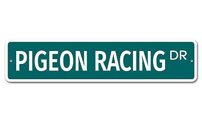 7001 SS Pigeon Racing 4