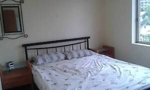 BRIGHT, TIDY AND FULLY FURNISHED ROOM AVAILABLE!!!!! Bondi Junction Eastern Suburbs Preview