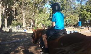 HORSE RIDING LESSONS Roleystone Armadale Area Preview