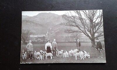 RARE PC CONISTON FOXHOUNDS 1905 GRASMERE CUMBRIA - HUNTING HOUNDS HUNTSMAN FOX