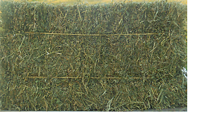 Lucerne Hay for Sale Wivenhoe Pocket Somerset Area Preview
