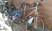 3 bicycles Kallangur Pine Rivers Area Preview