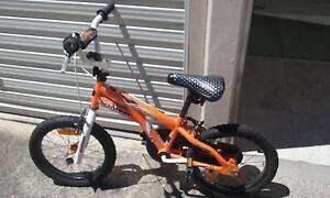 Schwinn Scorch Bike Bondi Beach Eastern Suburbs Preview
