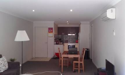Room 117/31 Thynne St