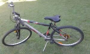 Esperia Storm Off Road Bike $50 Albion Brisbane North East Preview