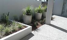 Budget Clean Yard Works Applecross Melville Area Preview